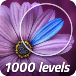 Exceptions 1000 Levels 1.8.2 MOD Unlimited Money