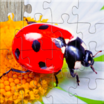 Insect Jigsaw Puzzles Game – For Kids Adults 25.2 MOD Unlimited Money