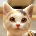 with My CAT 1.1.2 MOD Unlimited Money